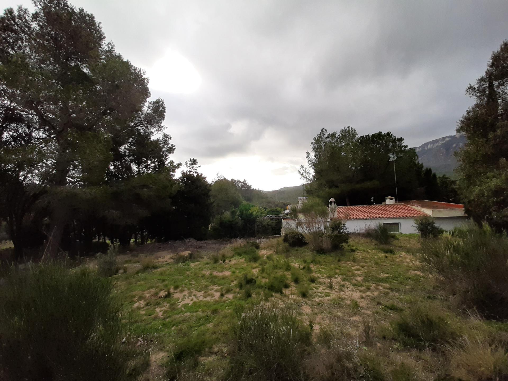 Casa -                                       Mont-roig -                                       3 dormitoris -                                       0 ocupants